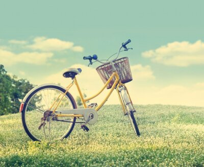 Poster Bicycle on the white flower field and grass in sunshine nature background