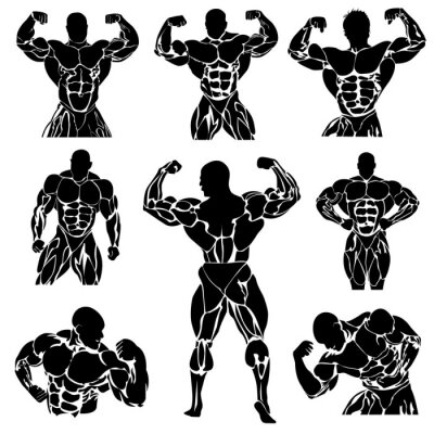 Poster Bodybuilding, Powerlifting, vector, set