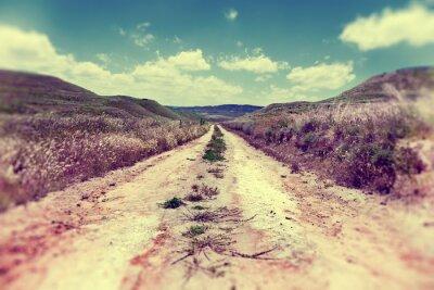 Poster Camino por el campo.Paisaje y naturaleza