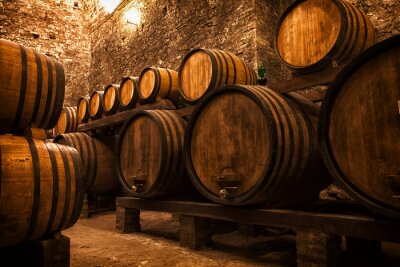 Poster cellar with barrels for storage of wine, Italy