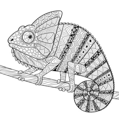 Poster Chameleon. Adult antistress coloring page. Black and white hand drawn doodle for coloring book