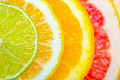 Poster citrus background