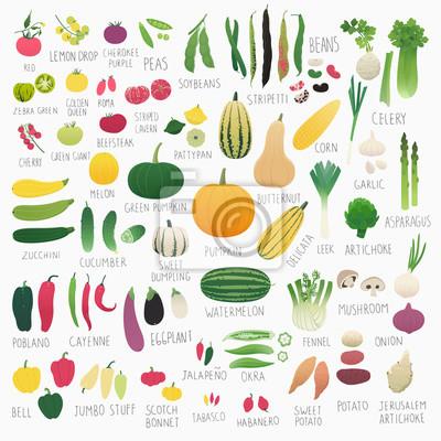 Poster Clip art food collection Vol.2: vegetables
