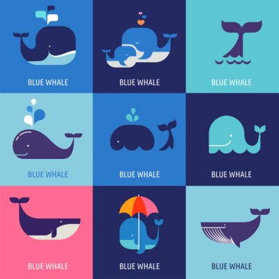 Poster Collection of vector whale icons
