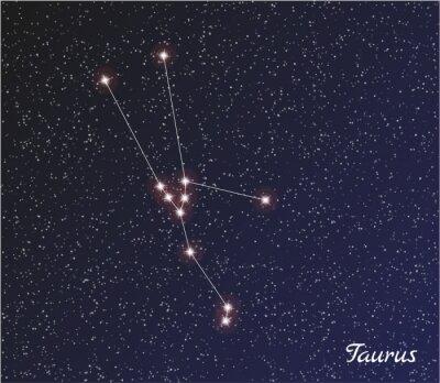 Poster constellation taurus