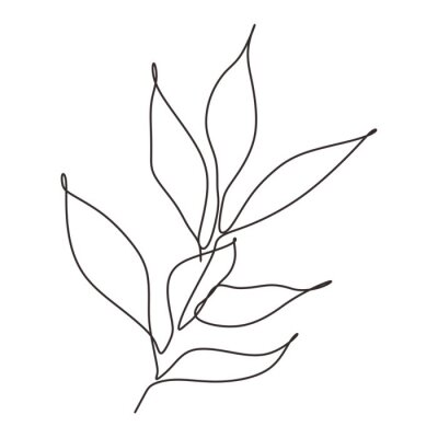 Poster Continuous line drawing of leaves plant vector. Illustration of botanical hand drawn minimalism artwork.