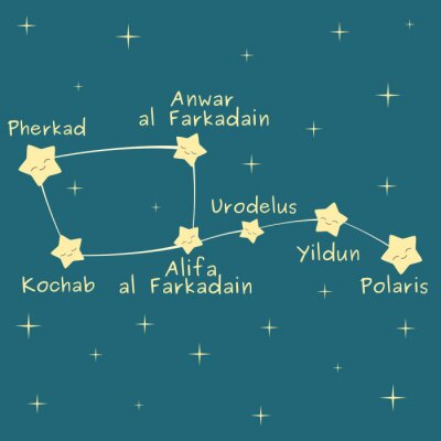 Poster cute cartoon little dipper constellation with the name of the stars vector illustration