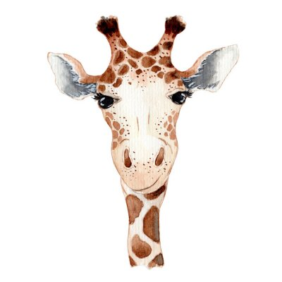 Poster Cute giraffe cartoon watercolor illustration animal