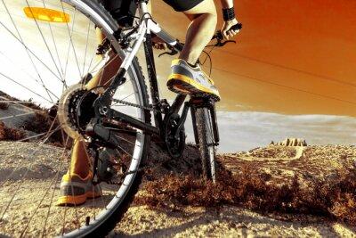 Poster Deportes. Bicicleta de montaña y hombre.Deporte en exterior