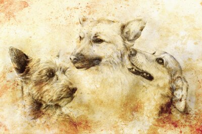 Poster Dogs pencil drawing on old paper, vintage paper and old structure with color spots.