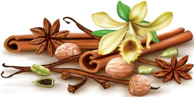 Poster Dry aromatic spices