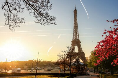 Poster Eiffel Tower with spring tree in Paris, France