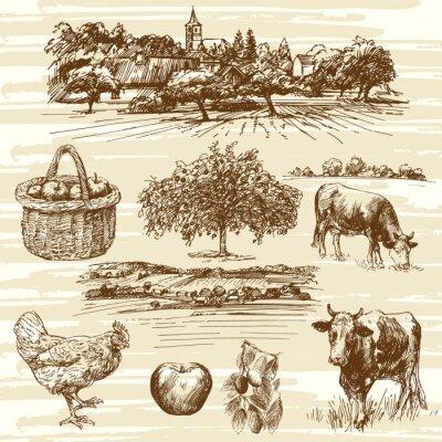 Poster farm, harvest, rural landscape - hand drawn set