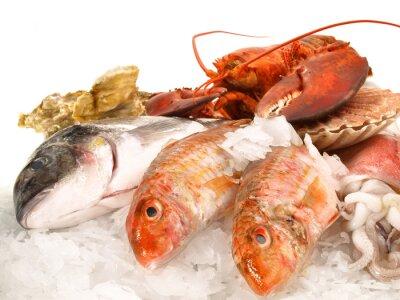 Poster Fisch und Meeresfrüchte