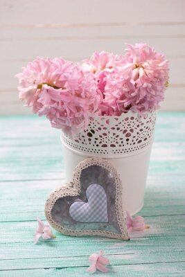 Poster Fresh pink hyacinths flowers  in bucket and decorative heart  on