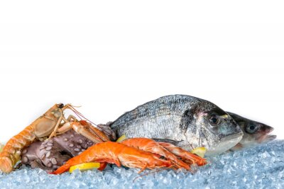 Poster Fresh seafood isolated on white background