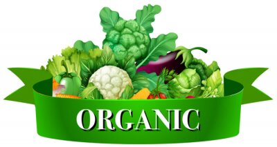 Poster Fresh vegetables with banner