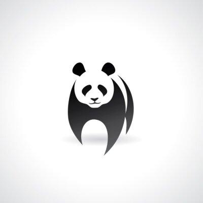 Poster Giant Panda