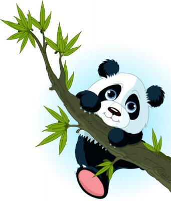 Poster Giant panda climbing tree