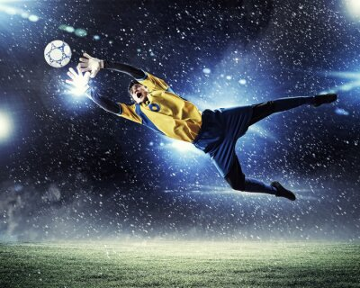 Poster Goalkeeper catches the ball