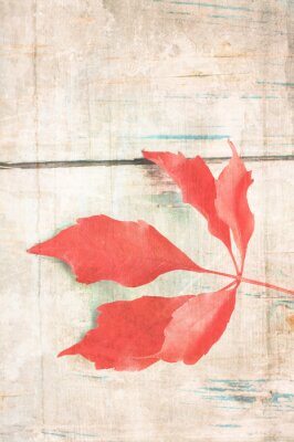 Poster Grungy background with red leaf