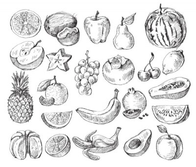 Poster hand drawn fruit