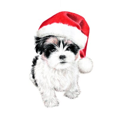 Poster hand drawn puppy dog with santa claus hat, cute fun Christmas card clipart, sketch of dog is colored pencil drawing, holiday clip art illustration isolated on white background