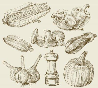 Poster Hand-drawn set vegetables