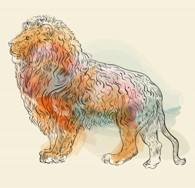 Poster Hand drawn vector illustration with lion