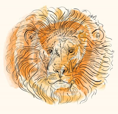 Poster Hand drawn vector illustration with lion's head