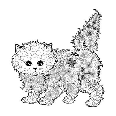 Poster Kitten  doodle