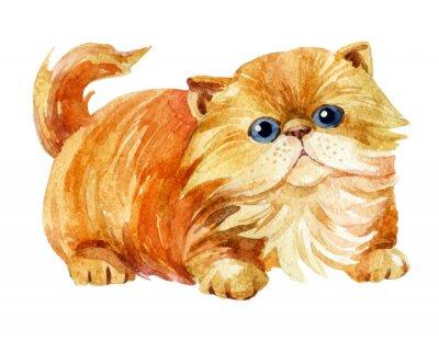 Poster Kitten sitting.