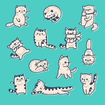 Poster Kittens
