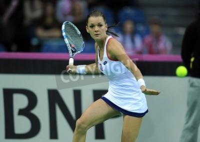 Poster KRAKOW, POLAND - FEBRUARY 7 2015: Agnieszka Radwanska during Fed Cup tennis cup in Poland
