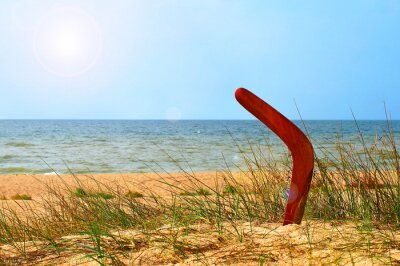 Poster Landscape with boomerang on overgrown sandy beach.