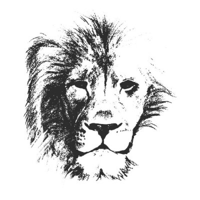 Poster lion head. hand drawn. vector illustration