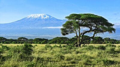 Poster Mount Kilimanjaro in Kenya