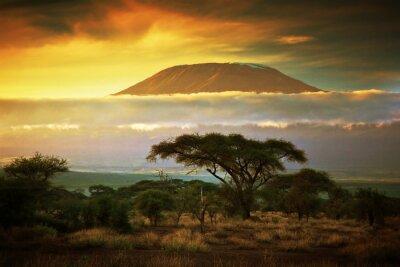 Poster Mount Kilimanjaro. Savanna in Amboseli, Kenya