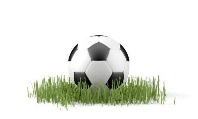 Poster Palla da calcio su erba
