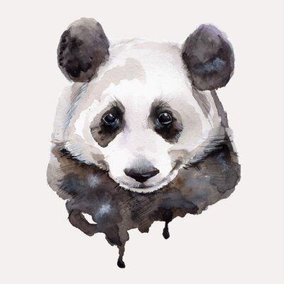 Poster Panda.Watercolor illustration Vector