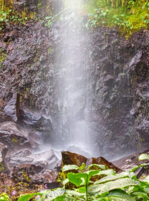 Poster petite chute d'eau à Anse des Cascades, île de la Réunion