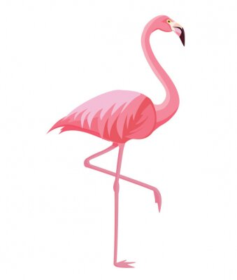 Poster Pink flamingo on a white background. Vector illustration.