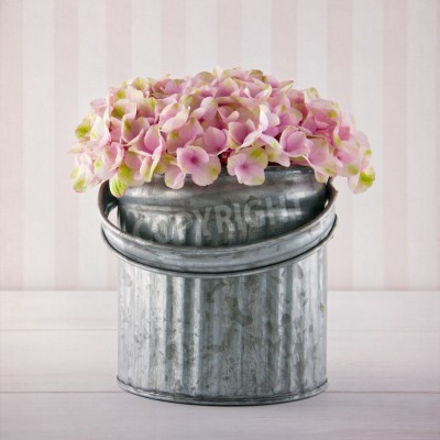 Poster Pink hydrangea flowers in a metal bucket on vintage striped background