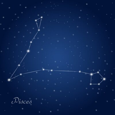 Poster Pisces constellation zodiac sign at starry night sky
