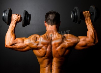 Poster rear view of bodybuilder training with dumbbells on black background
