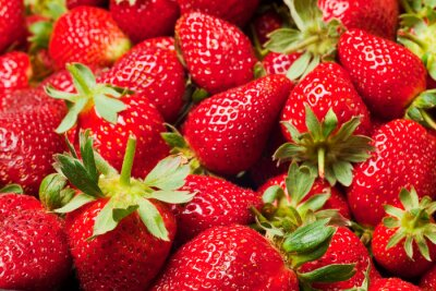 Poster red strawberries