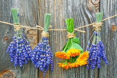 Poster ringelblume und lavendel