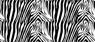 Poster Seamless zebra pattern