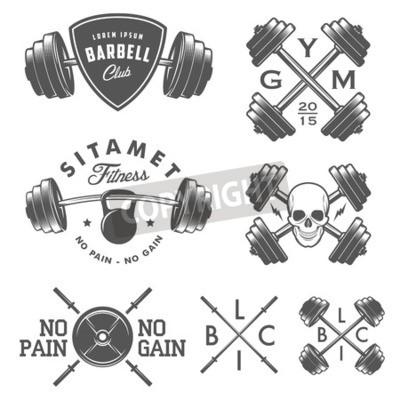 Poster Set of vintage gym emblems labels and design elements