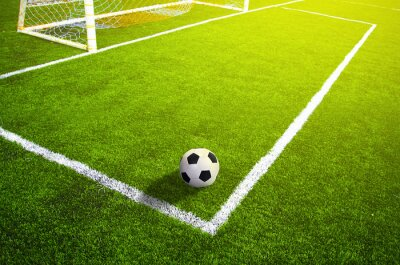 Poster Soccer grass field with marking and ball, Sport